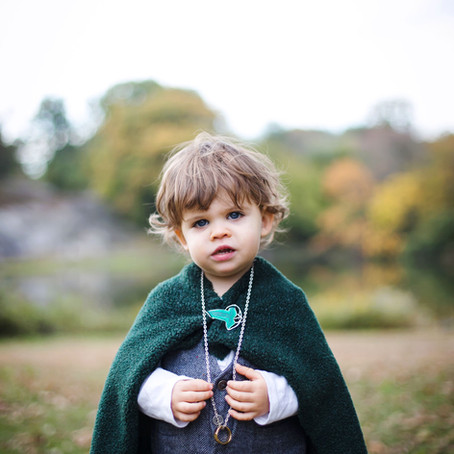 Little Lord of the Rings