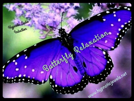 FREE Butterfly Relaxation....