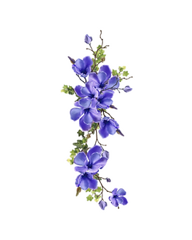 9. clematis.png