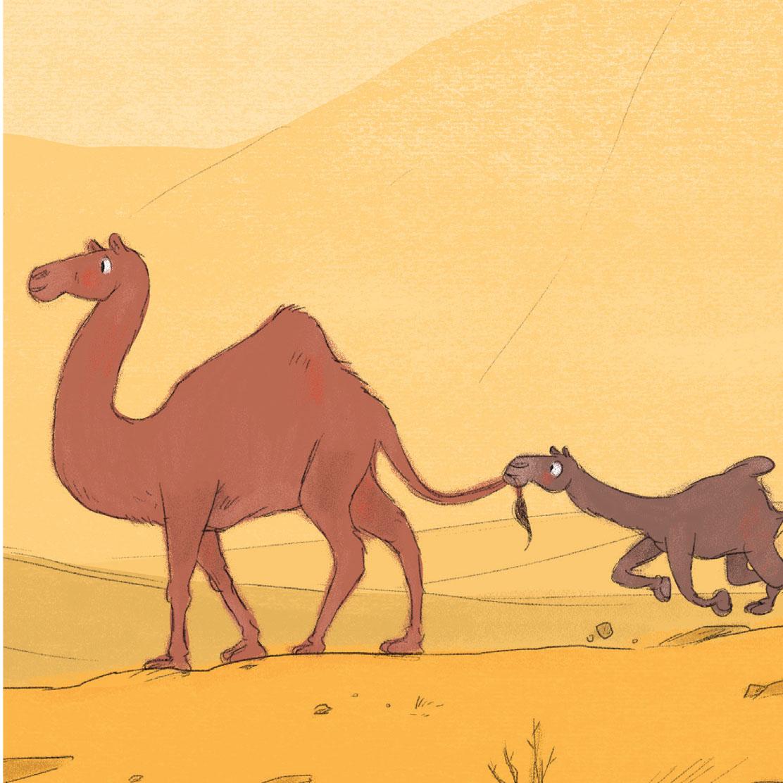camel_edited