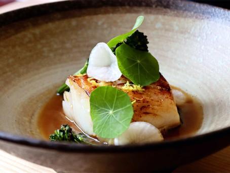 Seared Cod - Yuzu Miso Broth