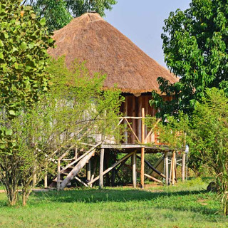 Hippo Family Cottage from outside.jpg