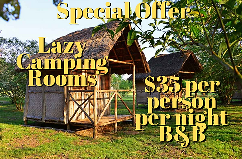 Lazy Camping B&B Offer.png