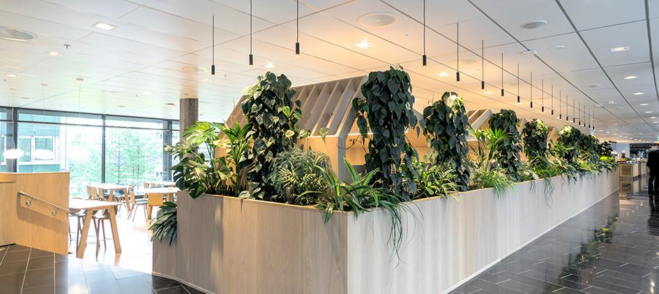 plantevegg3.jpg
