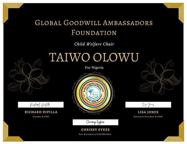 Taiwo Olowu.jpg