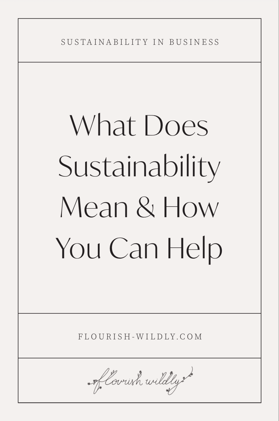 What sustainability means, a women holding a recyclable, sustainable coffee to-go cup, sustainable blog post image