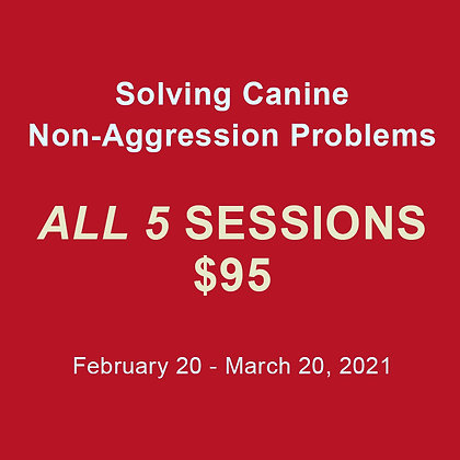 The Problem Solver Series