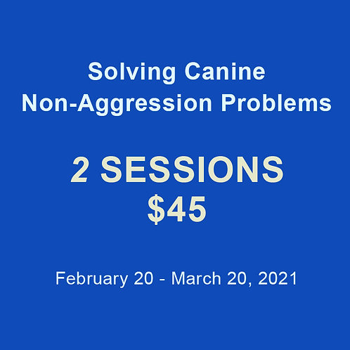Solving Problems: 2 Session