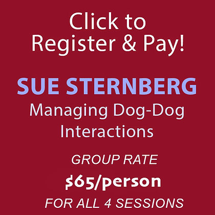 Sternberg: Managing Dog-Dog Interactions - 4 Sessions