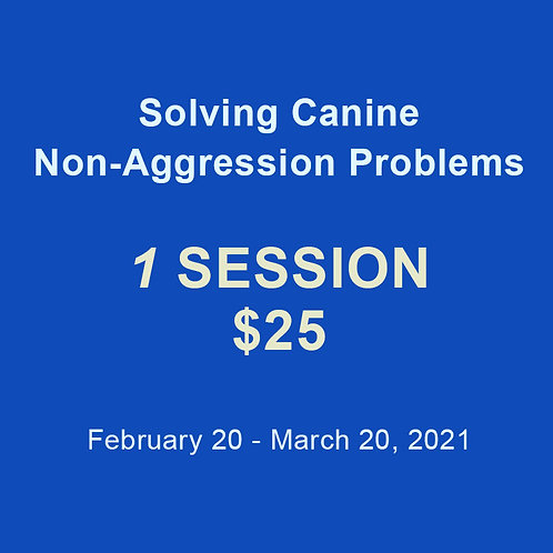 Solving Problems: 1 Session