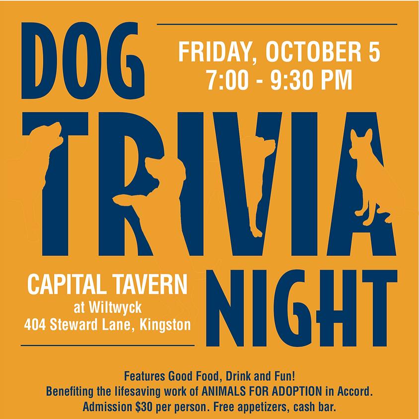Dog Trivia Night (1)