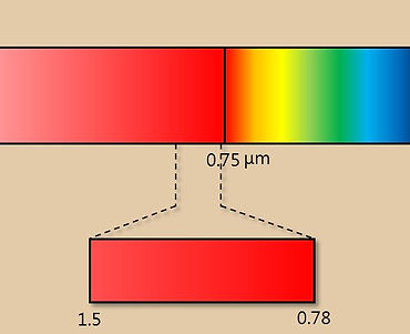 SPECM2.jpg