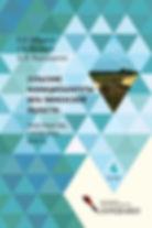 """монография """"Сельские муниципалитеты юга Тюменской области: пространство, статистика, власть"""" (2016)"""