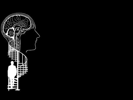 חקר המוח: מאז ועד מחר [חלק א]