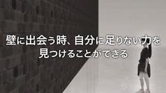 movie_6_wall_d.jpg