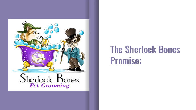 What makes Sherlock Bones different?