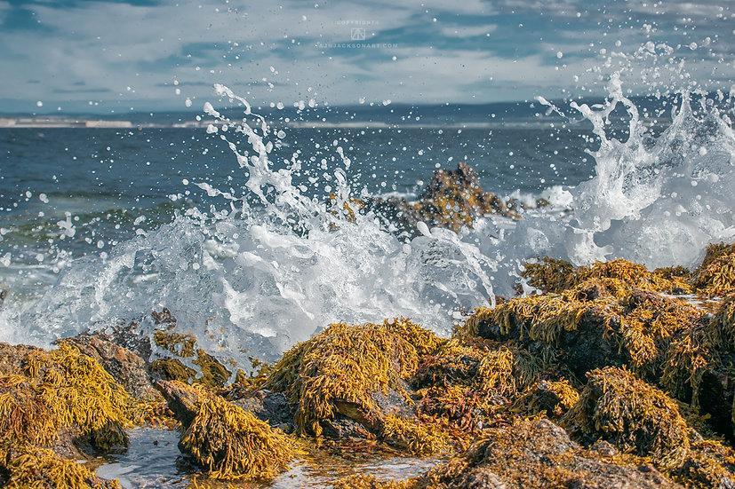 Crashing Waves 1 - Digital Download