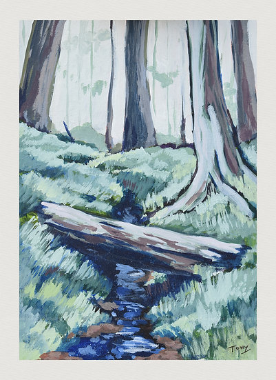 Log Over a Stream at Littleburn Woods - Open Edition Print