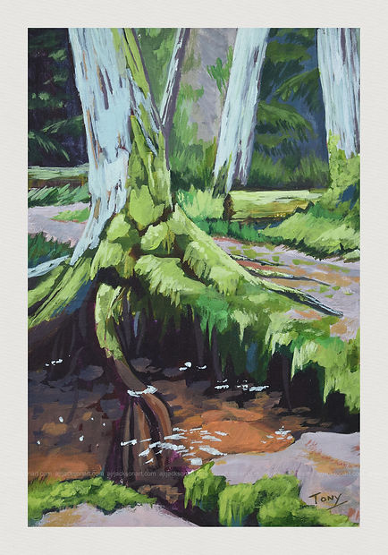 Overhanging Tree at Littleburn Woods - Acrylic on Cardboard