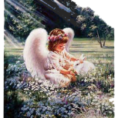 angelwrabbit1web-230x230.png