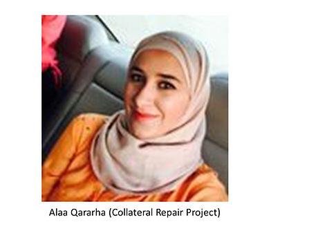 Alaa Qararha (Collateral Repair Project)