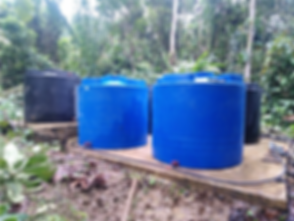 Green Empowerment Cayapas Water Project.
