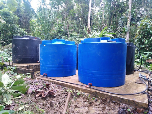 Green Empowerment Cayapas Water Project.