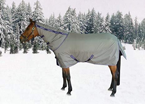TuffRider Titanium Turnout Blanket