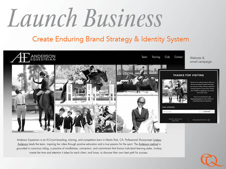 Launching New Business in a Crowded Space -- During COVID