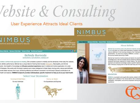 Business Consulting & Website Design
