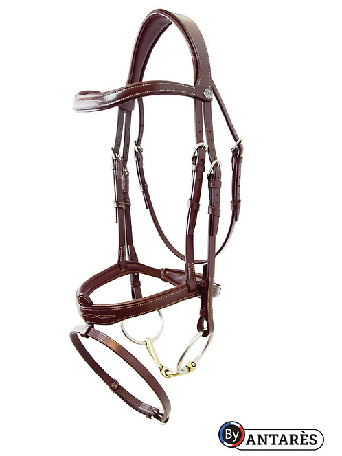 Signature by Antares Flash Noseband Bridle