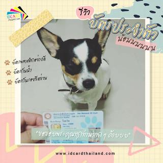 บัตรประชาชนสัตวเลี้ยง-รีวิว (19).jpg