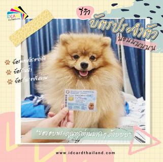 บัตรประชาชนสัตวเลี้ยง-รีวิว (15).jpg