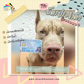 บัตรประชาชนสัตวเลี้ยง-รีวิว (12).jpg