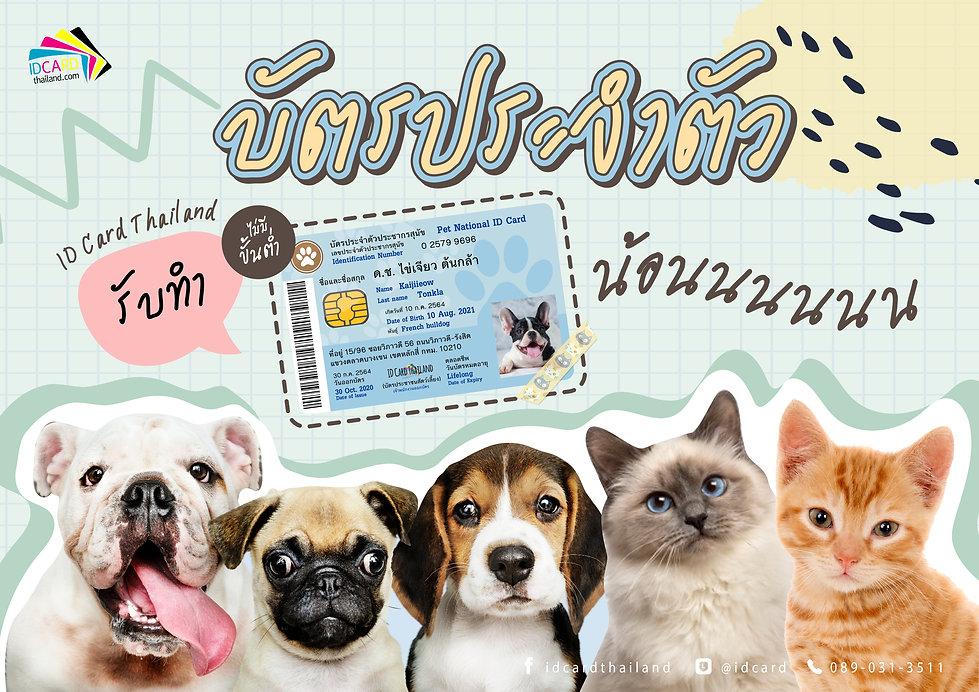 บัตรน้องหมาแมว.jpg