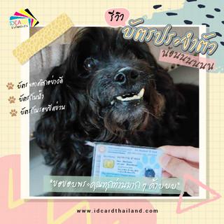 บัตรประชาชนสัตวเลี้ยง-รีวิว (11).jpg