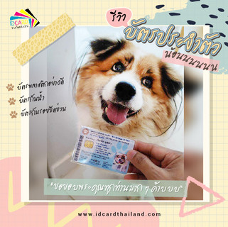 บัตรประชาชนสัตวเลี้ยง-รีวิว (10).jpg