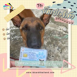 บัตรประชาชนสัตวเลี้ยง-รีวิว (16).jpg