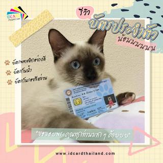 บัตรประชาชนสัตวเลี้ยง-รีวิว (1).jpg