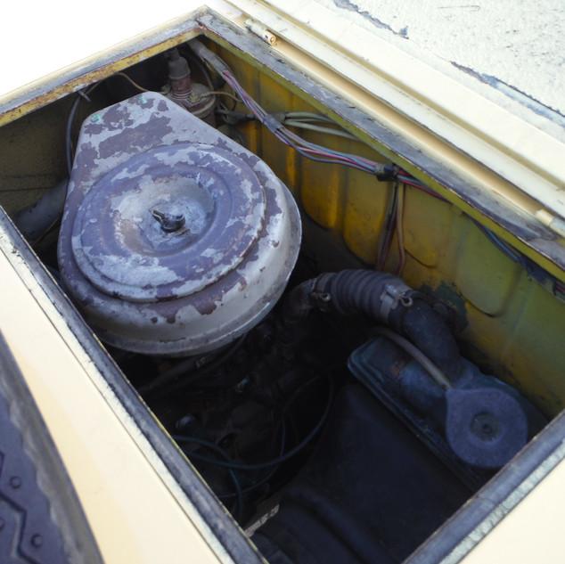 Fiat 600 Savio Jungla