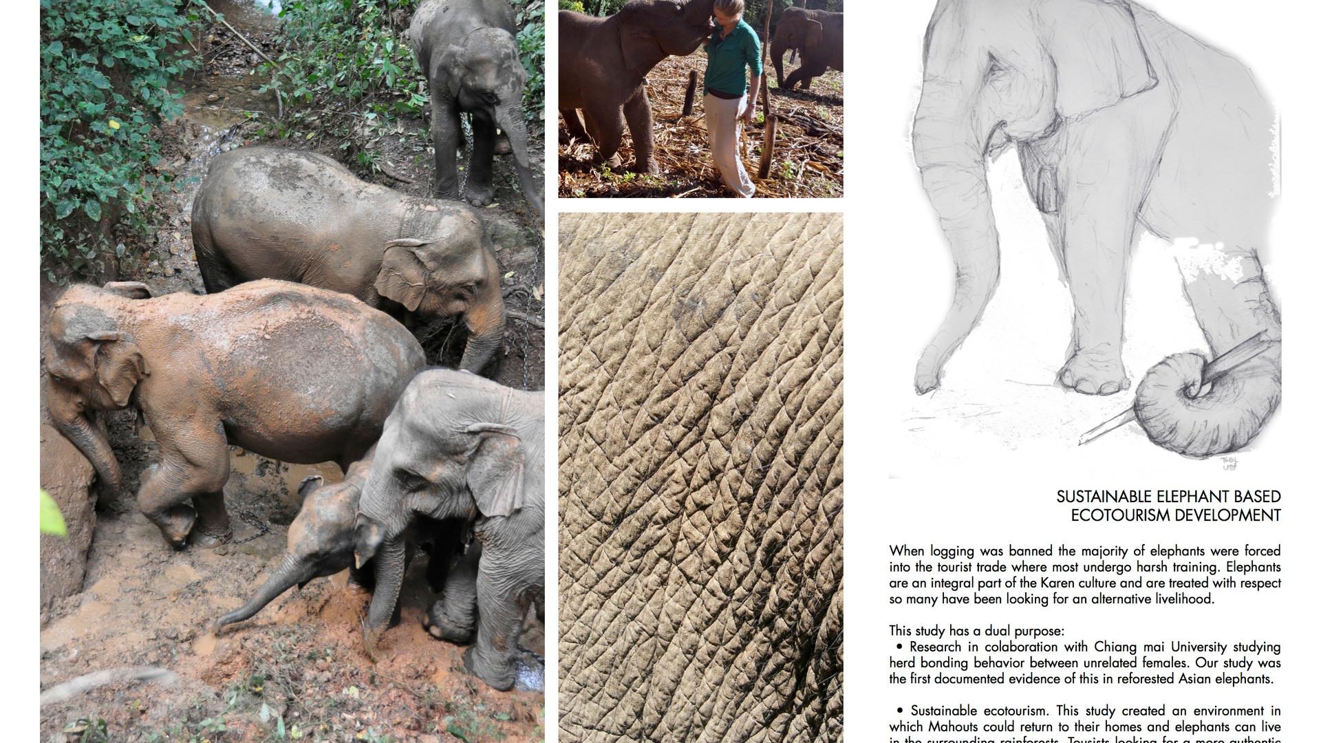 Ecotourism Development
