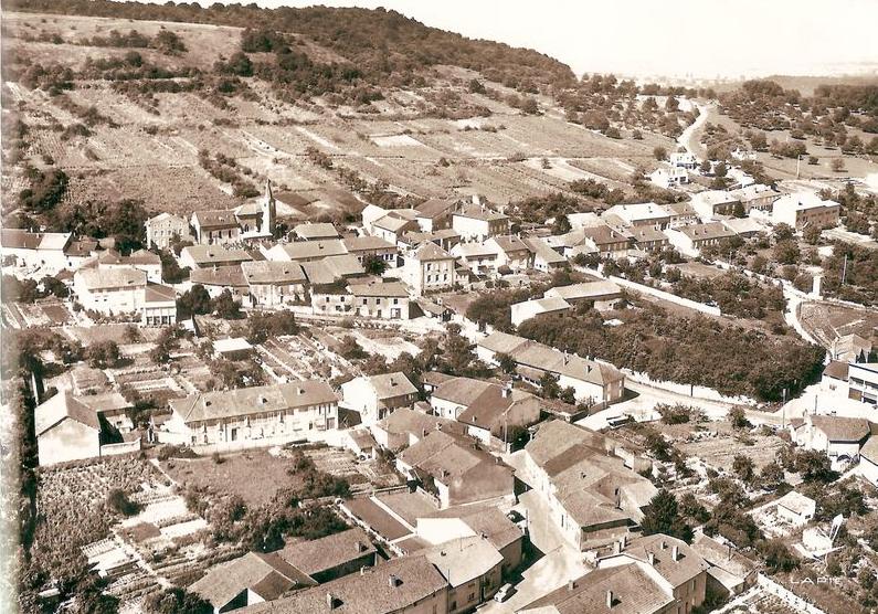 Année 1962