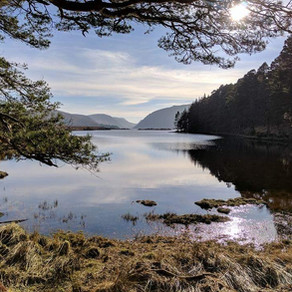 Glenveagh and Ards forest park