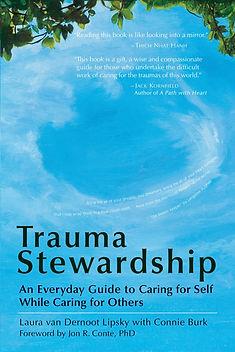 Trauma Stewardhip.jpg