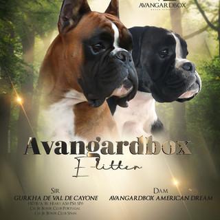 Gurkha de Val de cayone x Avangardbox American Dream