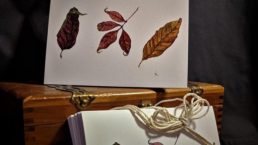 Three Fall Leaves