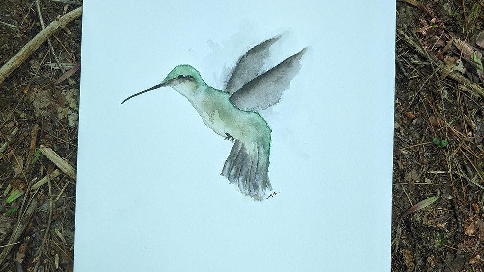 Joyful Hummingbird