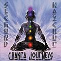 Chakra-Journeys.jpg