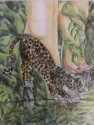 Wild Habitat Heel
