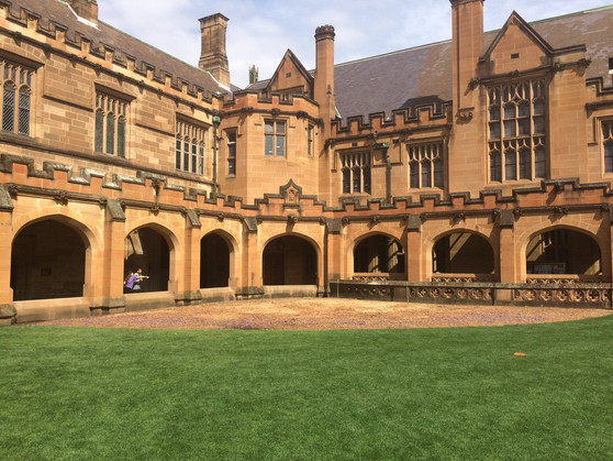 "Sydney University Hits A ""Purple Patch"" After 88 Years Of A Great Life."